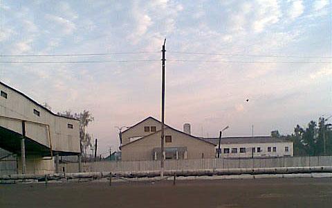 Картинки по запросу ик-11 фото мордовия колония строгого режима